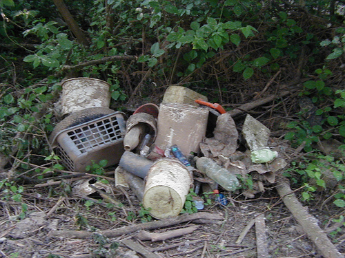 Illegaler Müll in der Natur (Bild: Elias Schwerdtfeger, CC BY-NC-SA 2.0)