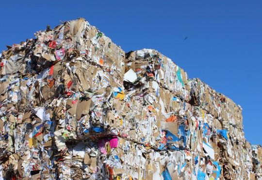 Abfall (Bild: Katharina-Franziska Kremkau / Silke Gebel, MdA; CC BY 4.0)